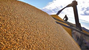 El precio de la soja, imparable: subió casi USD 17 y la tonelada supera los 521 dólares en Chicago