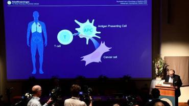 Inmunoterapia contra el cáncer: cómo funciona el tratamiento ganador del Nobel