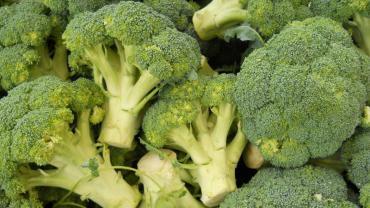 Estudio revela que el brócoli posee compuestos anticancerígenos
