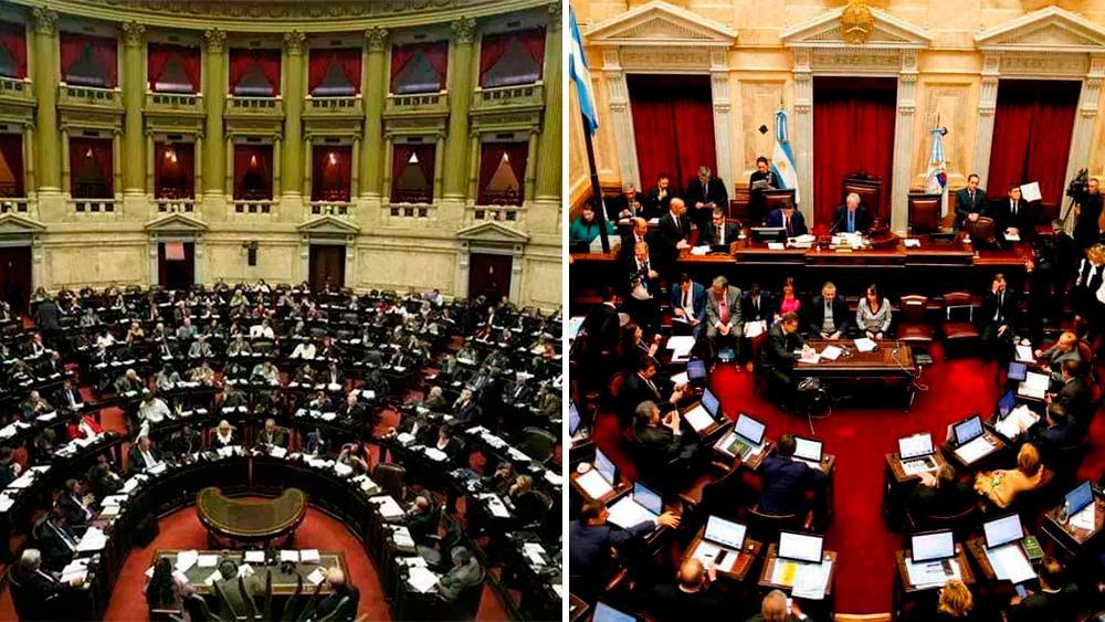 Cámara de Diputados y Cámara de Senadores, política, Congreso, elecciones 2019
