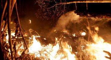 Amazonia: a pesar de prohibición, nuevos focos dificultan lucha contra el fuego