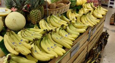 Bananas... siempre saludables: por esto debes frotar una cáscara de plátano en tu brazo