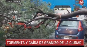 Temporal en la Ciudad: granizó y vientos fuertes provocaron caída de ramas