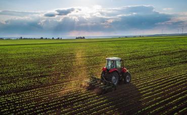 Por Boletín Oficial, formalizaron suba de las retenciones para la soja: del 30% a 33%