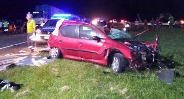 Tragedia en ruta 2: se cruzó un perro y murieron dos personas tras choque frontal