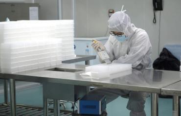 Coronavirus: Alemania confirma tres nuevos casos de la enfermedad