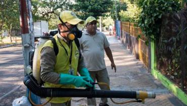 Alerta por Dengue: reunión de emergencia de Ministros de Salud del Mercosur