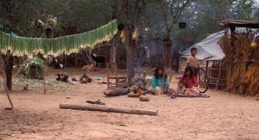Niños wichís en Salta: abandono, desnutrición y estado desesperante