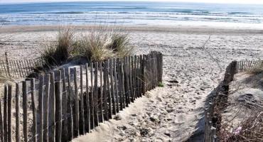 Encuentran a pareja que rompió cuarentena para tener sexo en la playa