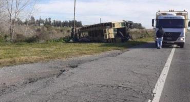 Ruta 2: volcó un camión jaula y más de 50 personas violaron la cuarentena para carnear cerdos