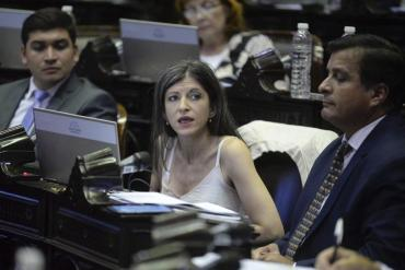 El Gobierno nacional toma distancia del proyecto de la diputada Fernanda Vallejos