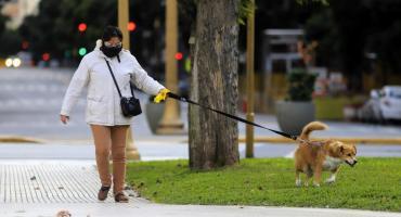 Coronavirus en Argentina: reportaron 15 muertos y 552 nuevos infectados en las últimas 24 horas