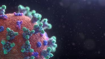 Coronavirus en el Mundo: cerca de 84,7 millones de contagiados y más de 1,83 millones de muertos