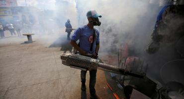 El dengue, el otro gran problema para México y Centroamérica en plena pandemia de coronavirus