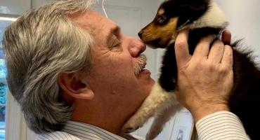 Alberto Fernández presentó en redes sociales a Kaila, la nueva hija de su perro Dylan