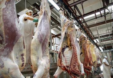 Otra víctima del coronavirus: por primera vez en la historia la producción mundial de carne caerá dos años seguidos