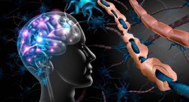 Esclerosis múltiple: advierten que pacientes interrumpen tratamientos y anulan consultas por miedo al coronavirus