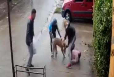Pitbull atacó a una nena de 7 años y la tuvieron que operar para que no pierda su pierna