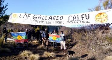 """Tierras tomadas: mapuches ocuparon un campo en Río Negro y dicen volver a su """"territorio ancestral"""""""