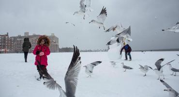 Las fotos de la gran tormenta de nieve que azota a Nueva York