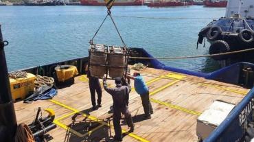 De no creer: en Mar del Plata robaron cerca de 800 litros de cerveza guardados en el océano