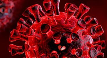 Covid-19: casi 113 millones de contagios y más de 2,5 millones de muertos en el mundo