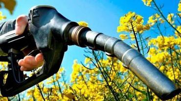 Diputados debatieron del nuevo régimen de biocombustibles