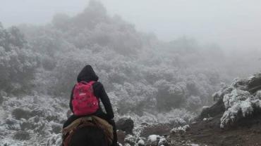 Amor por la vocación: las docentes que viajan a lomo de mula a dar clases en San Juan y se volvieron virales