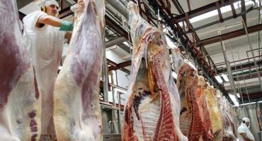 Trabas a la exportación: se perdieron más de USD100 millones y el precio de la carne subió un 18% en el segundo trimestre