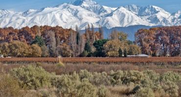 Mendoza, elegida como uno de los 100 mejores destinos del mundo según la revista Time