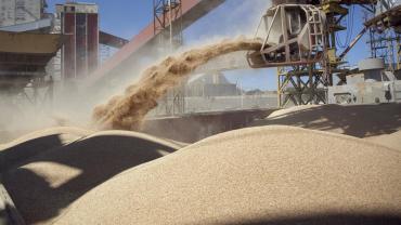 Bayer anunció que suspende su negocio de soja en el país