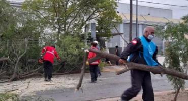 Fuertes vientos azotaron a la zona central del país y provocaron destrozos en Córdoba
