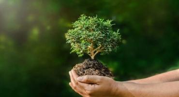 18 de octubre: Día Mundial de la Protección de la Naturaleza